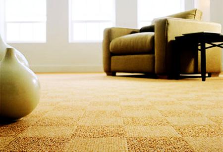 diy-clean-carpet