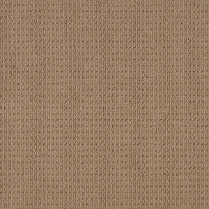 Acorn-3118-Synthetic-Carpet