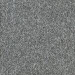 Seagrass7588