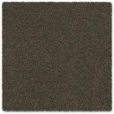 carpet-chantilly-rodham