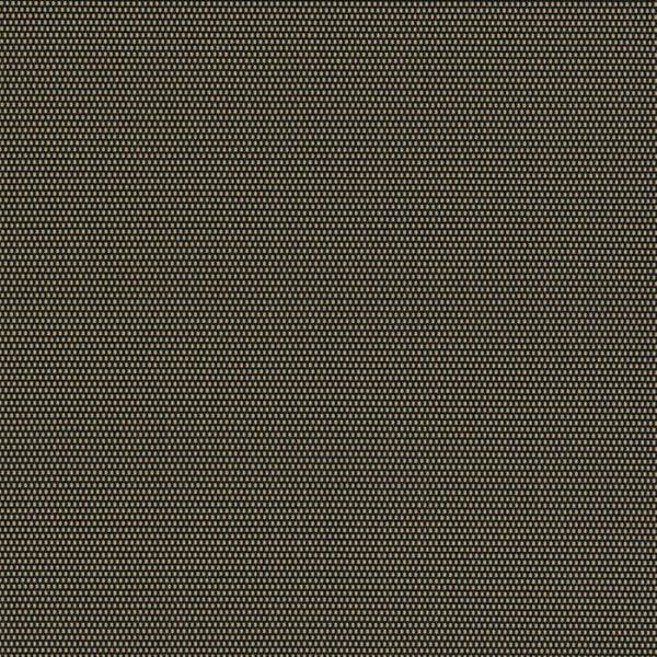 vivid-shade-black-sable