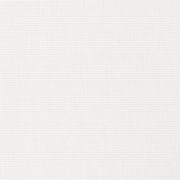 vivid-shade-white