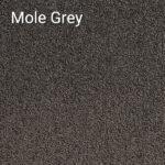 Mole Grey