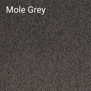 Atlantic-Mole-Grey