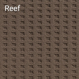 Canadian-Bay-Reef