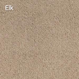 Compass-Elk-Carpet