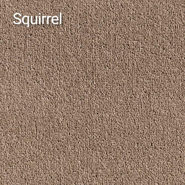 Compass-Squirrel-Carpet
