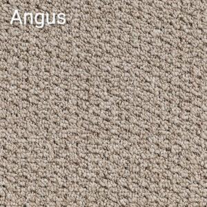 Flashtone-Angus-Carpet