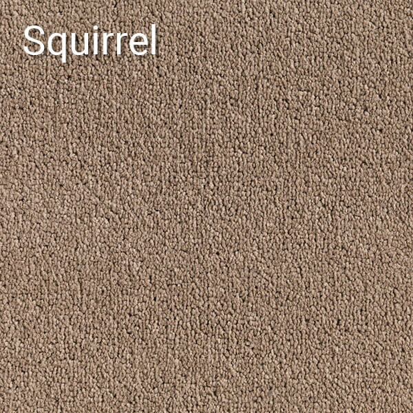 Hemisphere-Squirrel-Carpet