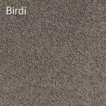 Birdi
