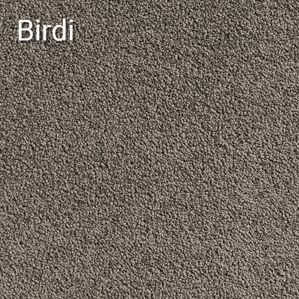 Pluto-Birdi-Carpet