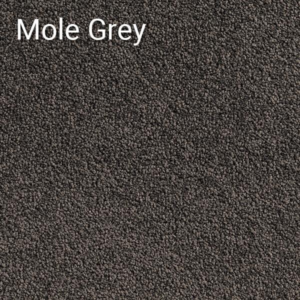 Pluto-Mole-Grey-Carpet