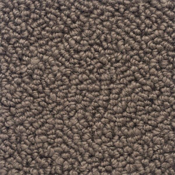carpet-armure-nutria