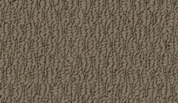 carpet-campaspe-bark