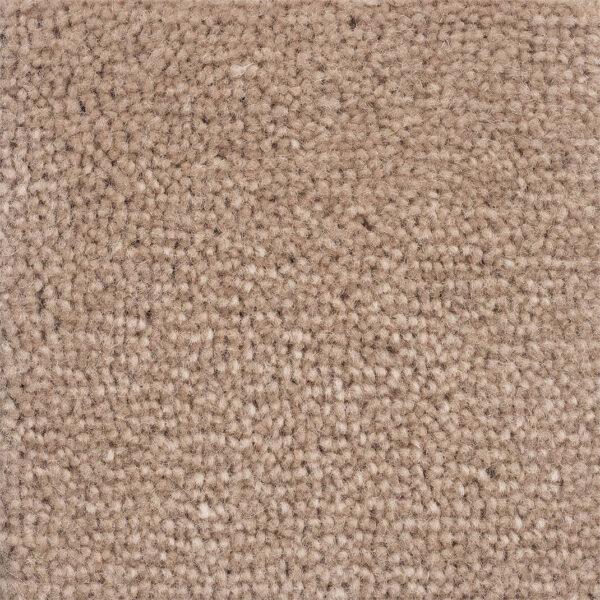 carpet-velluto-chinchilla