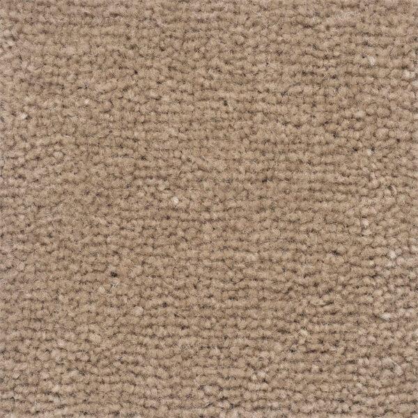 carpet-velluto-praline