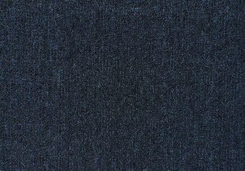 Aussie_Bahar_Persian_Blue 1403