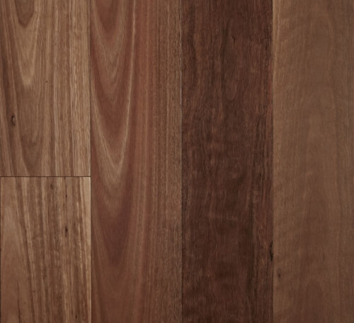 Spotted Gum – Smooth Semi-Gloss