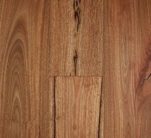 Spotted Gum Rustic
