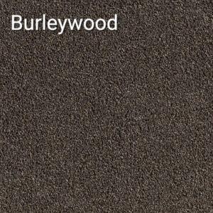 Venetian-Burleywood-Carpet