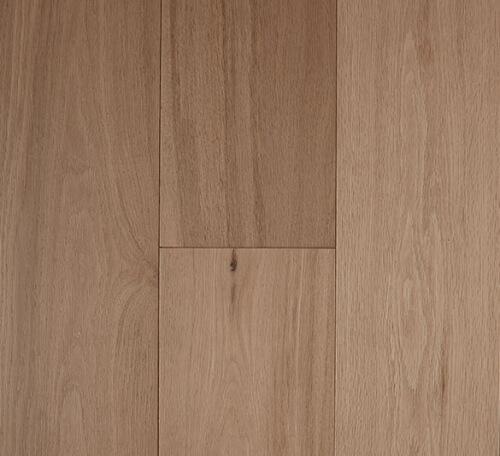 parchment-pronto-500x456