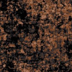 Algae M 08 2019 1863