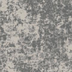Algae M 08 2019 1865