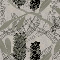 Banksia M 08 2020 0699