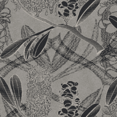 Banksia M 08 2020 0700