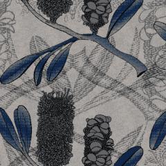 Banksia M 08 2020 0701