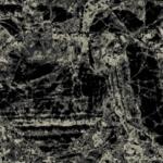 M 08 2019 1856