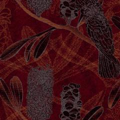 Cockatoo M 08 2020 0722