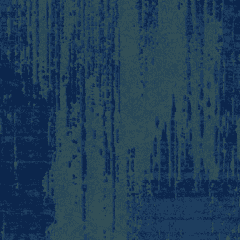 Distressed M 01 2020 1232