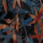 Eucalypt M 01 2020 0750