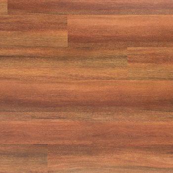 Eucalyptus Red Gum