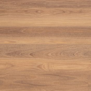 Natural Plank 3.0 Qld Spotted Gum