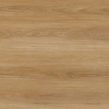Natural Plank 5.0 Blackbutt