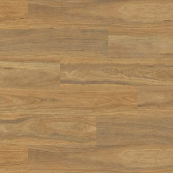 Natural Plank 5.0 Spotted Gum