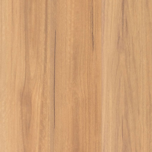 NuCore Extreme Spotted Gum