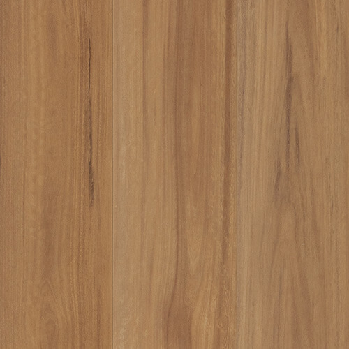 Nucore Excellence Spotted Gum
