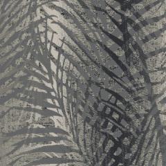 Palms M 01 2019 1066