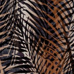 Palms M 01 2019 1069