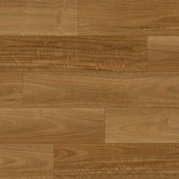 Soleil NSW Spotted Gum