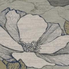 Waterlilies M 01 2019 1043