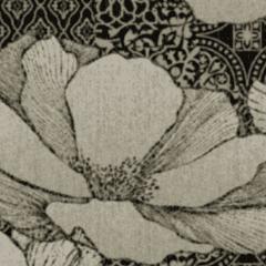 Waterlilies M 01 2021 0958
