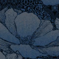 Waterlilies M 01 2021 0960