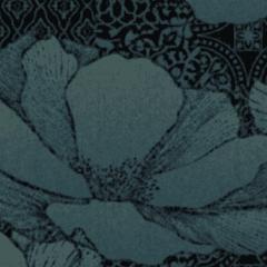 Waterlilies M 01 2021 0961