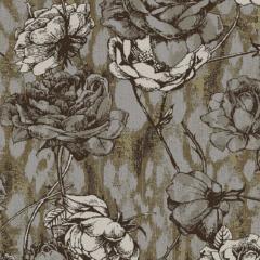 Wild Rose M 01 2019 1138