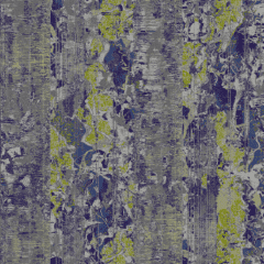 Ancient Forest 2021 23 C