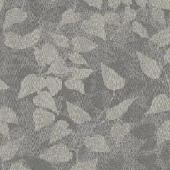 Foliage M 01 2019 1105
